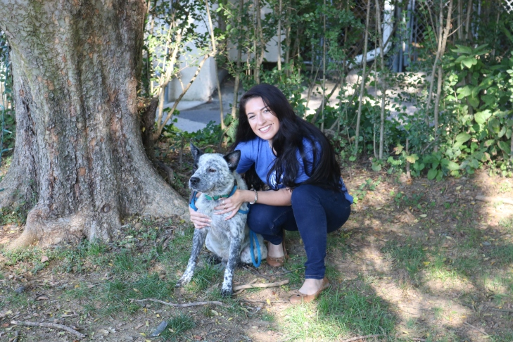 local-shelter-helps-homeless-animals-photo-1