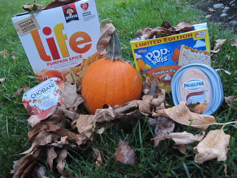 pumpkin-spice-and-everything-nice-photo-1