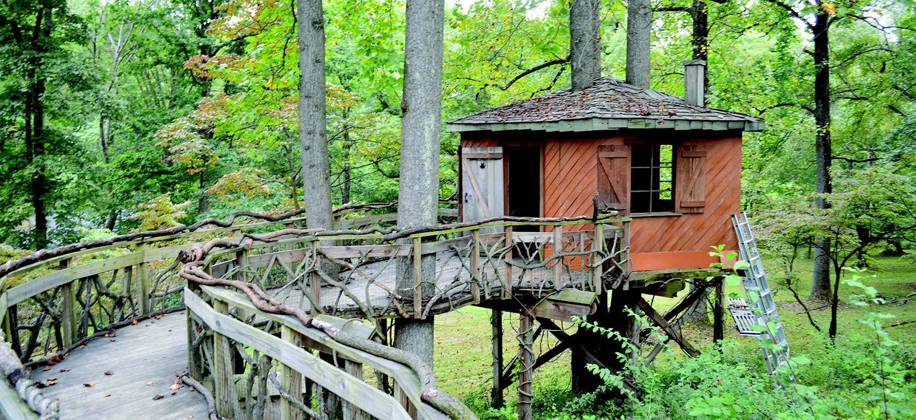 Picture of: Tyler Arboretum Offers Bugs Butterflies And Beyond The Communitarian